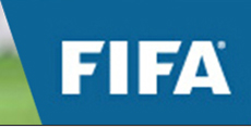 人造草坪 FIFA 会员企业