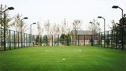 APEC足球场