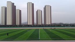 ShandongCase