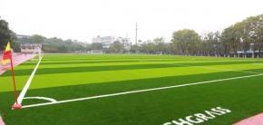 【让运动更精彩】恭贺火炬草坪入驻湘钢体育中心!