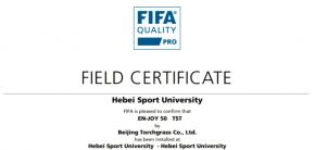 火炬FIFA认证   石家庄首片FIFA认证场地入驻河北体育学院